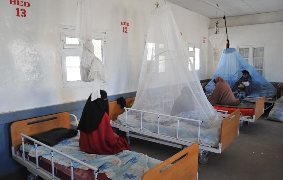 Eine Reisekrankenversicherung ist in Tunesien anzuraten. Sie sollte einen Rückholflug nach Deutschland einschließen. Die medizische Versorgung in Tunesien ist ganz unterschiedlich. Neben den Hospitälern in der Hauptstadt Tunis kann man im Landesinneren oder in kleineren Städten auf Krankenhäuser treffen, die sich eher wenig an europäischen Standards orientieren. (#2)