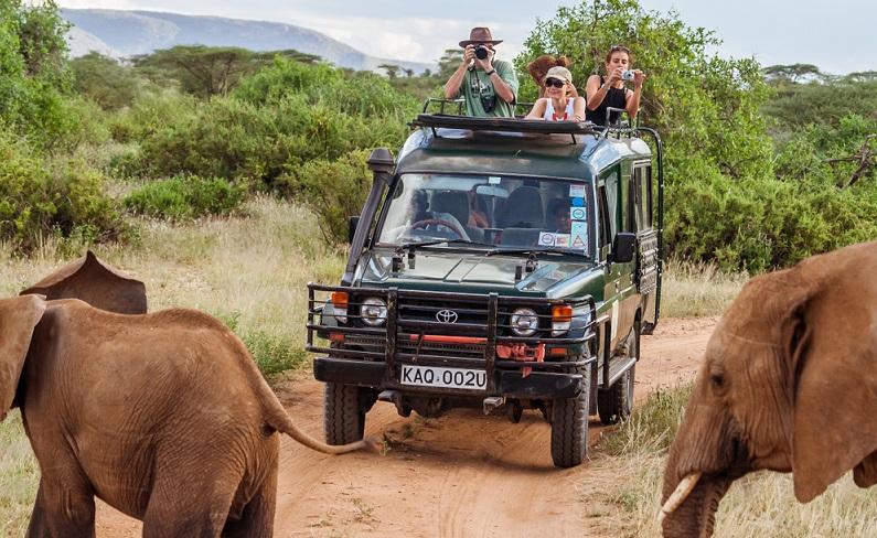 Südafrika gilt als das beliebteste Land der Welt, wenn es um Safaris für Familien und damit für mehrere Generationen geht.  ( Foto: Shutterstock-Pierre-Yves Babelon)