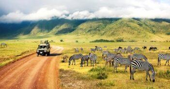 Sanfter Tourismus in Afrika: Vorteile einfach erklärt, Beispiele ( Foto: Shutterstock- Delbars)